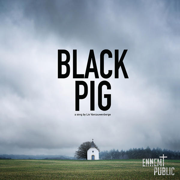 Lio Vancauwenberg - Black Pig