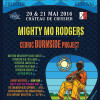 Edition 2016 du Blues Rules Festival de Crissier