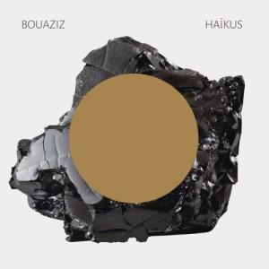 Pascal_Bouaziz-Haïkus