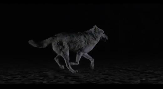 "The_Kills_–_""Siberian_Nights""_Video_-_Stereogum"