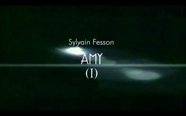 Sylvain Fesson - AMY en  perspective
