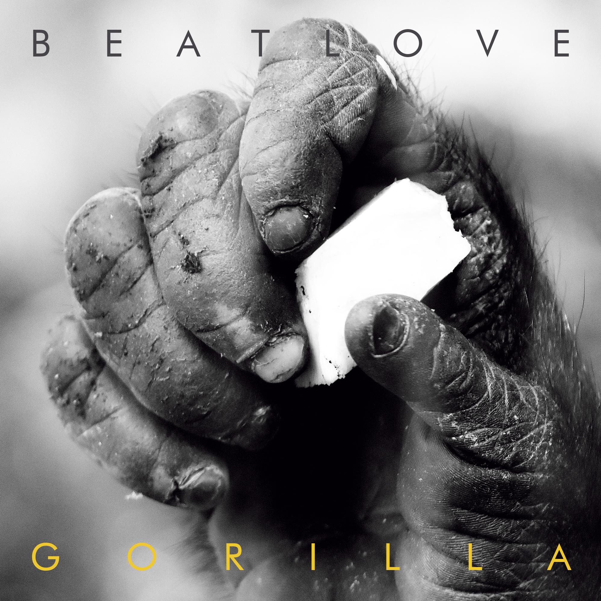 BeatLove - Train