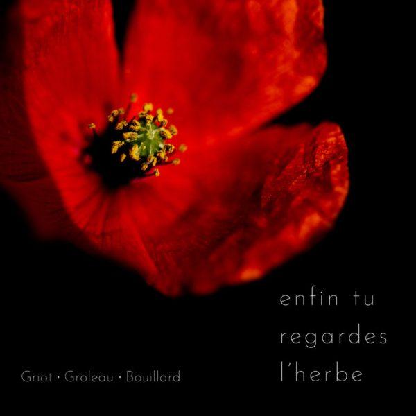 Fred Griot - Enfin Tu Regardes L'herbe