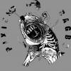 Pixies : Bagboy