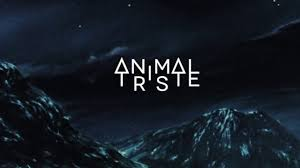 Animal Triste - Wild At Heart