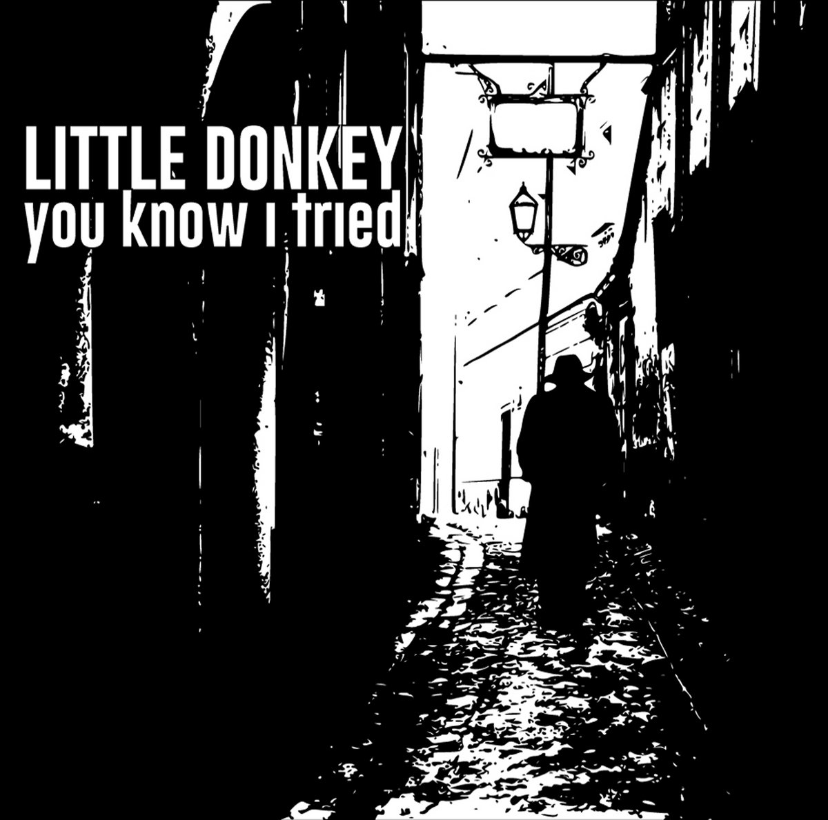 Little Donkey – You Know I Tried