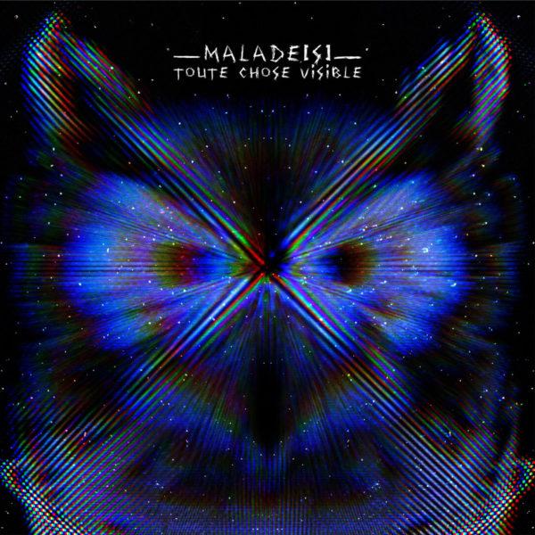 Malade[s] - Toute Chose Visible