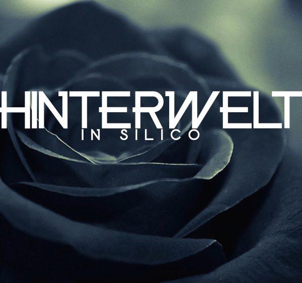 Renaud Gabriel Pion - Hinterwelt in silico