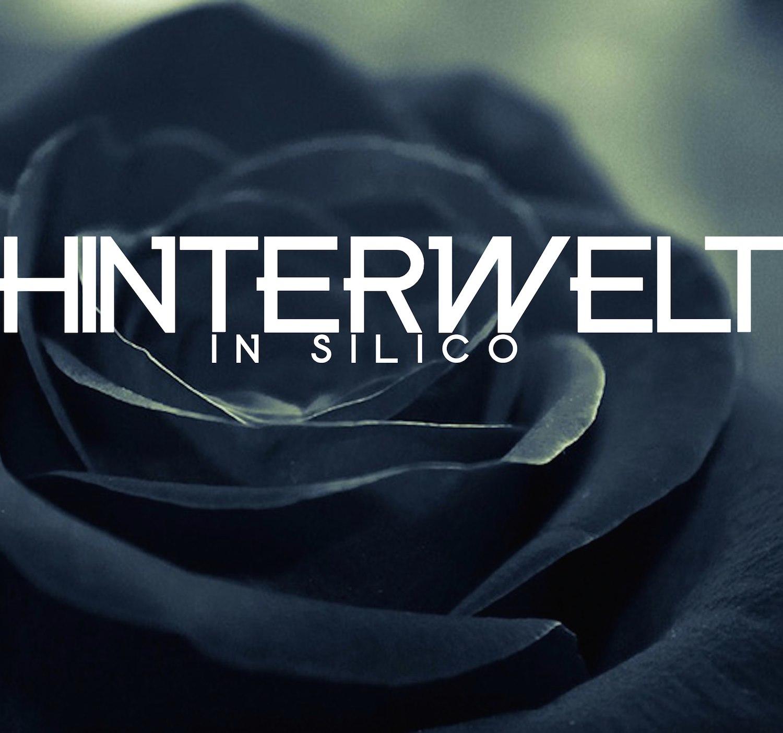Renaud Gabriel Pion – Hinterwelt in silico