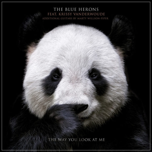 The Blue Herons - The Way You Look At Me