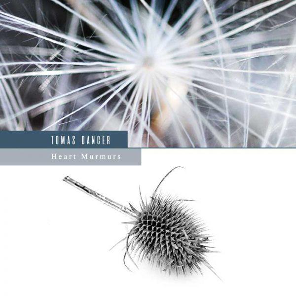 Tomas Dancer - Murmurs