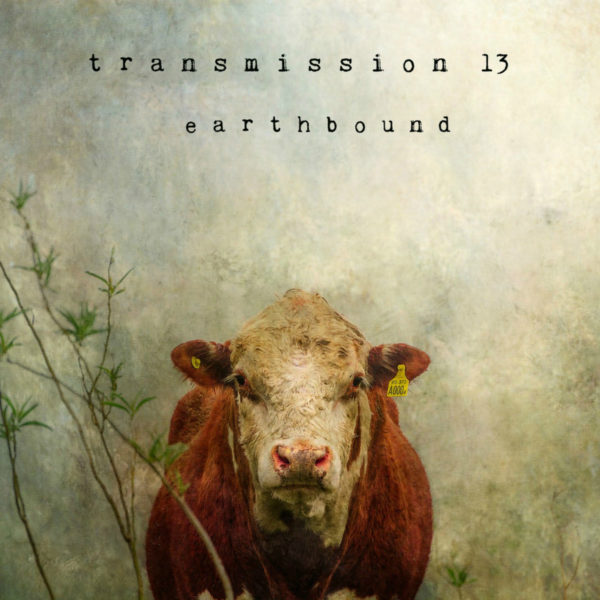 Transmission 13 - Earthbound